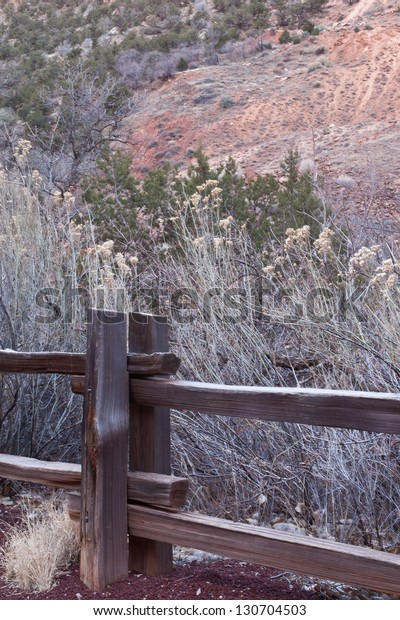 Wooden fence post and tall yellow grasses in Zion's National Park