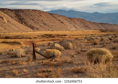 wooden fence posts barbed wire fence in golden morning grassy valley Sierra Nevada mountains, California
