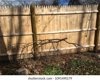 Wooden fence for residential property