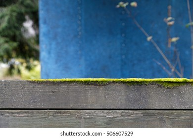 Wooden fence with vivid moss which forms a geometrical abstraction in Mondrian style