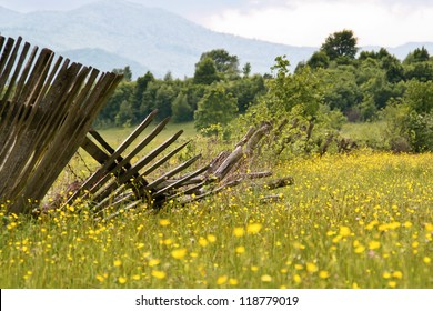 Wooden fences broken down in the grass