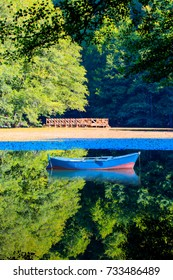 Wooden fishing boat at lake shore covered with fallen leaves in autumn, Yedigoller national Park - Bolu
