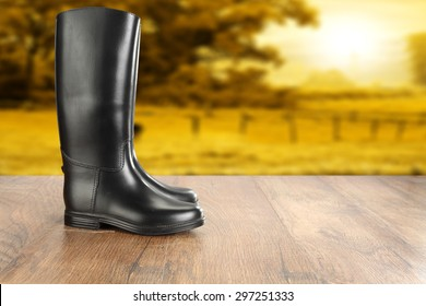 wooden floor and shoes of black color