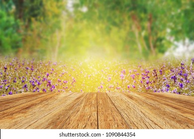 wooden floor terrace beside colorful blooming garden in the morning sunrise.