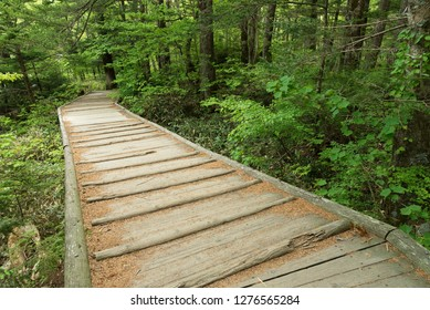wooden foot bridge on hiking trail in Hotaka mountain range, Kamikochi national park, Kamikochi, Japan