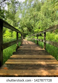 A wooden foot bridge with wood railings, on a walking path over a small river in a natural environment in the forest, disappearing into the trees in the distance, during the spring summer season.