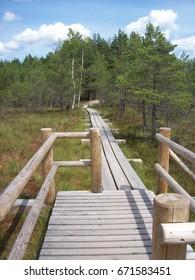 Wooden footbridge above swamps, Latvia