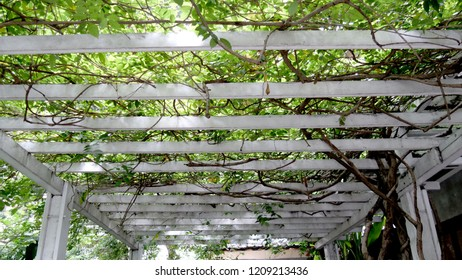 Wooden footbridge pergola structure - Run wires up and across the top of the pergola
