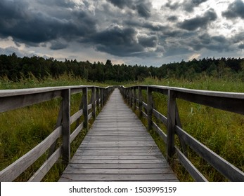 wooden footbridge through the swamp to forest. Dark storm clouds herald the coming storm. High grass on both side of bridge