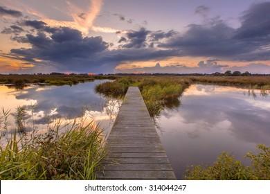 Wooden footbridge in wetland as a concept for challenge in nature reserve de Onlanden near Groningen, Netherlands