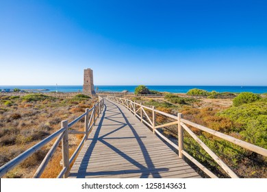 wooden footpath to ancient Thieves Tower, from year 1500, in Artola Dunes Natural Park, next to Mediterranean Sea, in Cabopino of Marbella town (Malaga, Andalusia, Spain, Europe)