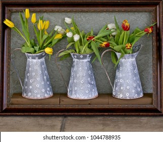 A wooden frame surrounds three individual milk tins each filled with a bunch of tulips. One yellow,  one purple,  and one white.  Making this an excellent example of living art.