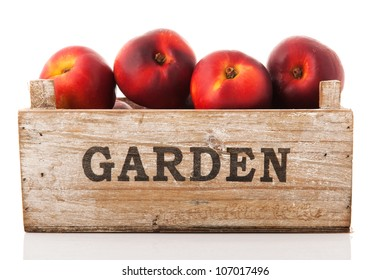 Wooden garden crate nectarines isolated over white background