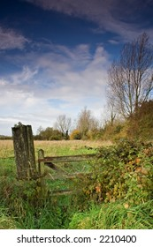 A wooden gate in the countryside, overgrown with brambles.