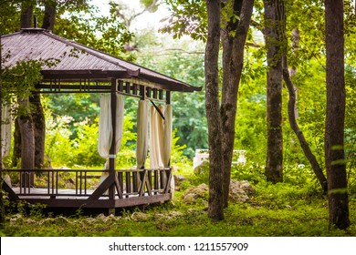 Wooden gazebo on summer forest scene. Gazebo forest view. Forest gazebo scene