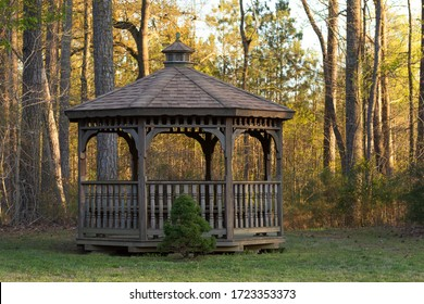 A wooden gazebo with a small tree adorning it in front of a woodline during golden hour.
