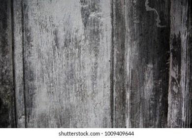 Wooden grey acient texture. Grunge