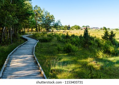 Wooden hiking trail following the forest edge beside a lake meadow. Farmland in the background. Location lake Takern, Sweden.