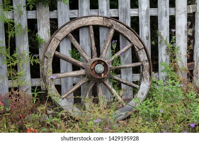 Wooden horse cart / wagon wheel lying up against a wooden fence with beautiful greenery surrounding it.