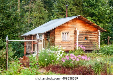 The wooden house in beautiful blossoming to a garden