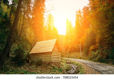 wooden house in the forest , autumn sunset , Carpathian mountains