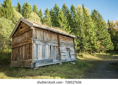 Wooden house with grass on the roof