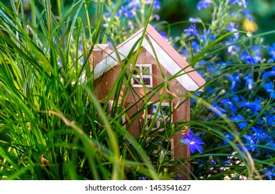 Wooden house stands between flowers and grasses
