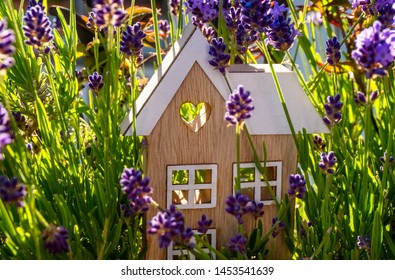 Wooden house stands between many flowers