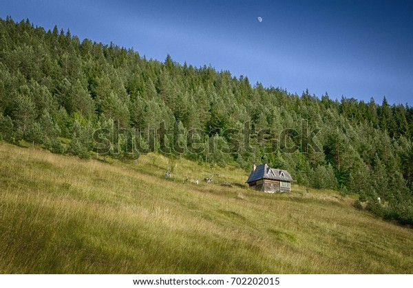 Wooden house in Tara National Park, Serbia