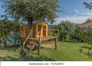 Wooden house in tree. Tree house.