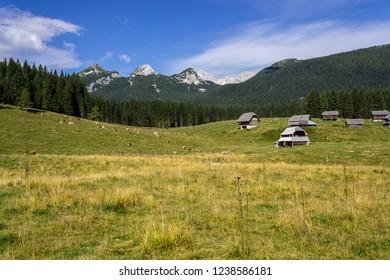 Wooden huts, green grass and blue sky in the valley of Triglav National Park. Slovenia, Triglav region. Julian Alps. Slovenian Alps mountains. Summer time.
