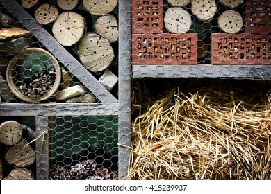 Wooden insect hotel decorative bug house, ladybird and bee home for butterfly hibernation and ecological gardening. Protection for insects concept.