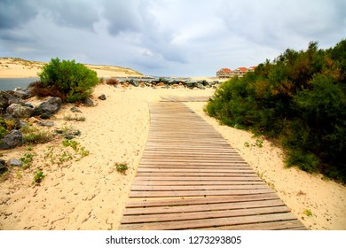 wooden jetty path in the middle of the sand dune at the south-west of France by the Atlantic coast