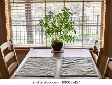 A wooden kitchen table and chairs near a window with a potted plant and placemats