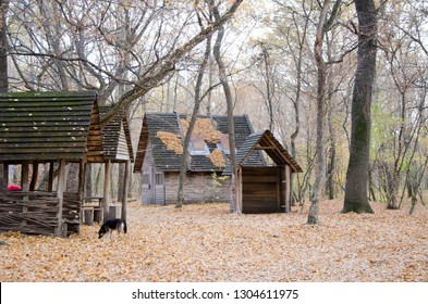 Wooden leisure houses in forest