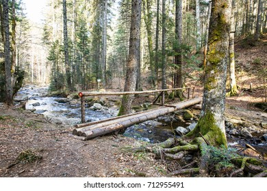 Wooden log footbridge crossing a pure mountain river in the forest, with a blaze drawn for direction. Wilderness, nature preservation, clean water and environmental conservation concept.