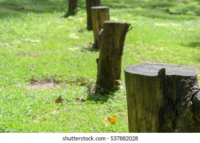 Wooden logs for fence with natural view at park in phuket, Thailand.