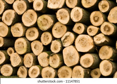 wooden logs piled up into a stack