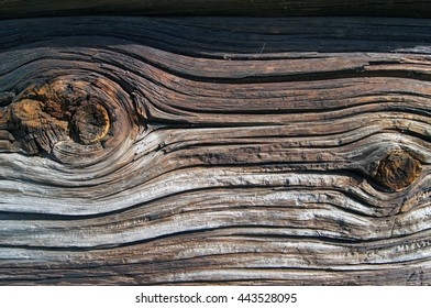 The wooden logs texture