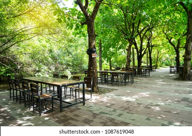 Wooden long table and bench under tree shade, natural garden seat idea.
