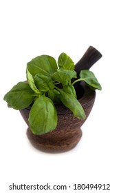 Wooden Mortar and green basil on white background
