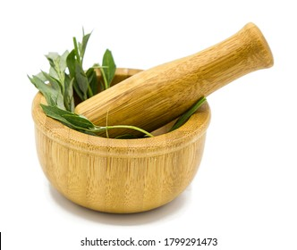 Wooden mortar with green leaves and pestle isolated on white background with shadow. Alternative medicine and nature concept. Side view