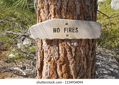 wooden no fires sign on a tree in the national forest of California