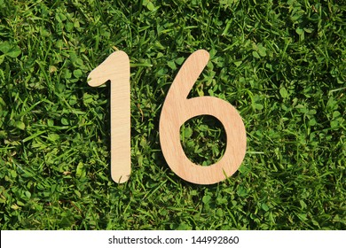 wooden number 16 on a grass and clover background