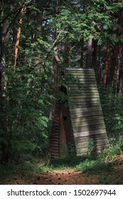 Wooden outhouse in a forest