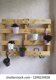 wooden palett as decoration on a balcony wall with flowers and Succulent plants