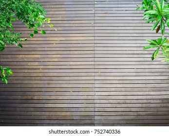 Wooden panel floor with green lave branch frame for background