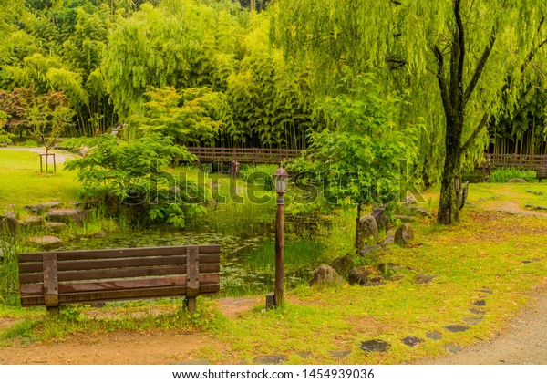 Wondrous Wooden Park Bench Next Small Pond Stock Photo Edit Now Bralicious Painted Fabric Chair Ideas Braliciousco