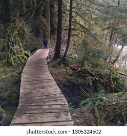 Wooden path arround trees and a small lake - North Vancouver, British Columbia, Canada