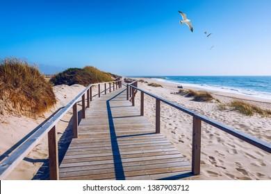 Wooden path at Costa Nova d'Aveiro, Portugal, over sand dunes with ocean view and seagulls flying over Praia da Barra. Wooden footbridge of Costa Nova beach in a sunny day. Aveiro, Portugal.